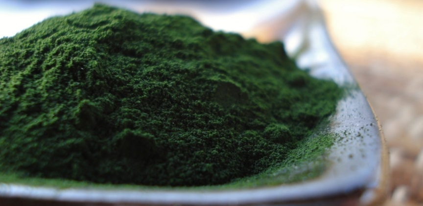 blogimage